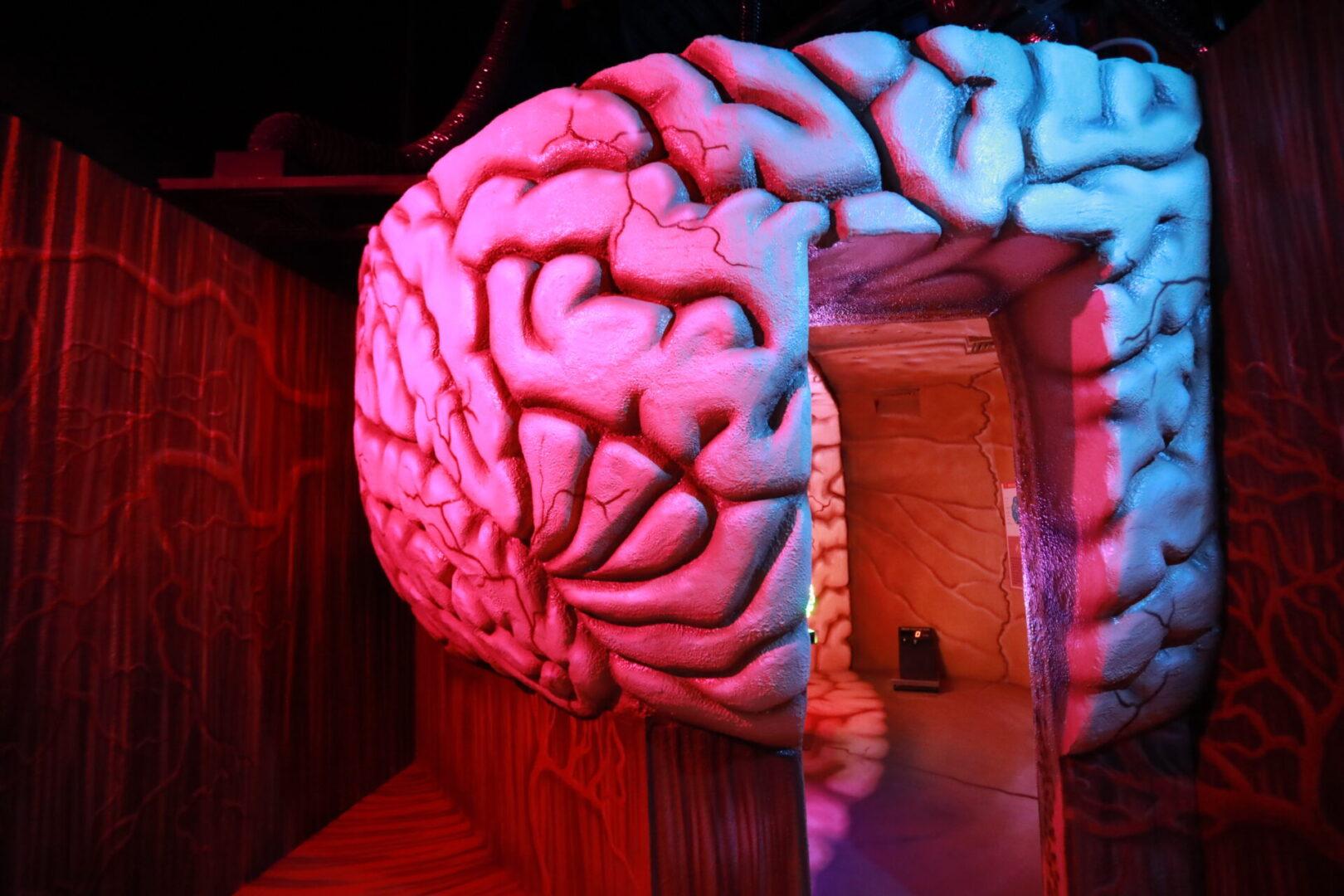 Художественное оформление аттракциона «Внутри человека» в парке развлечений «Galaxy» мозг