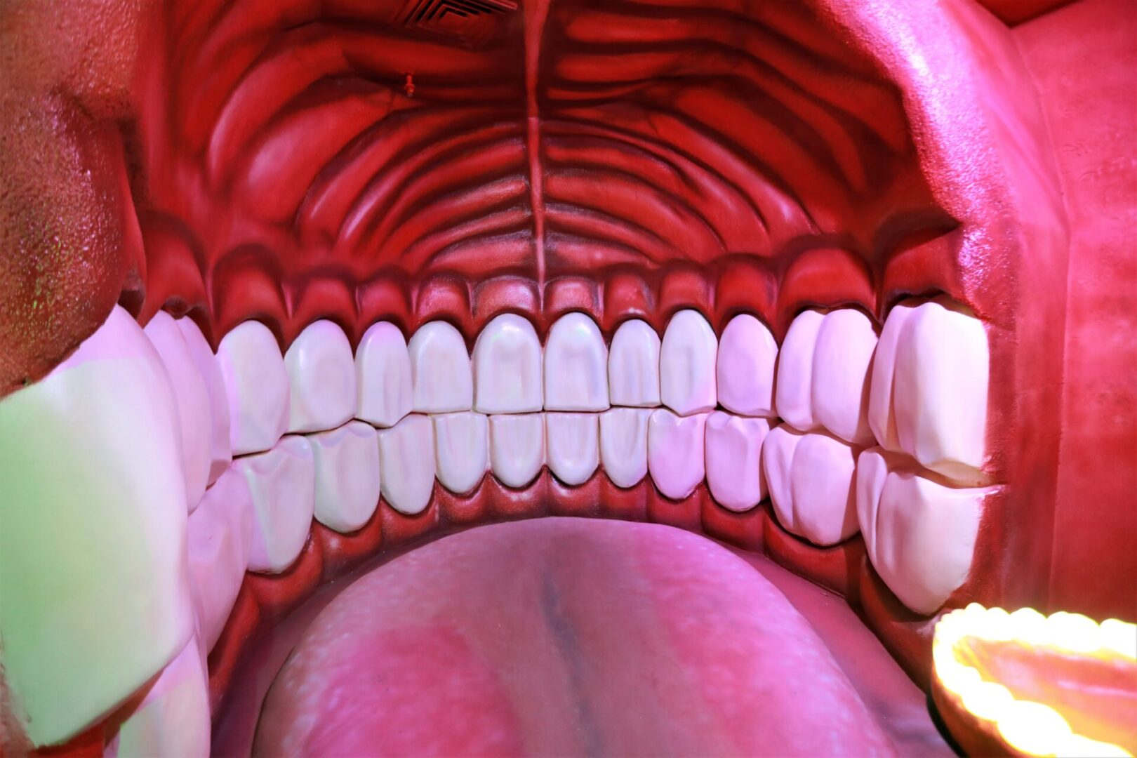 Художественное оформление аттракциона «Внутри человека» в парке развлечений «Galaxy» зубы
