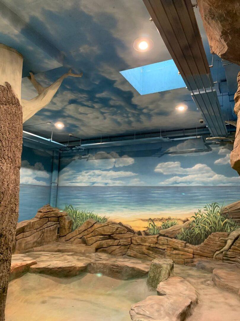 Роспись вольера на заказ в Киевском зоопарке небо